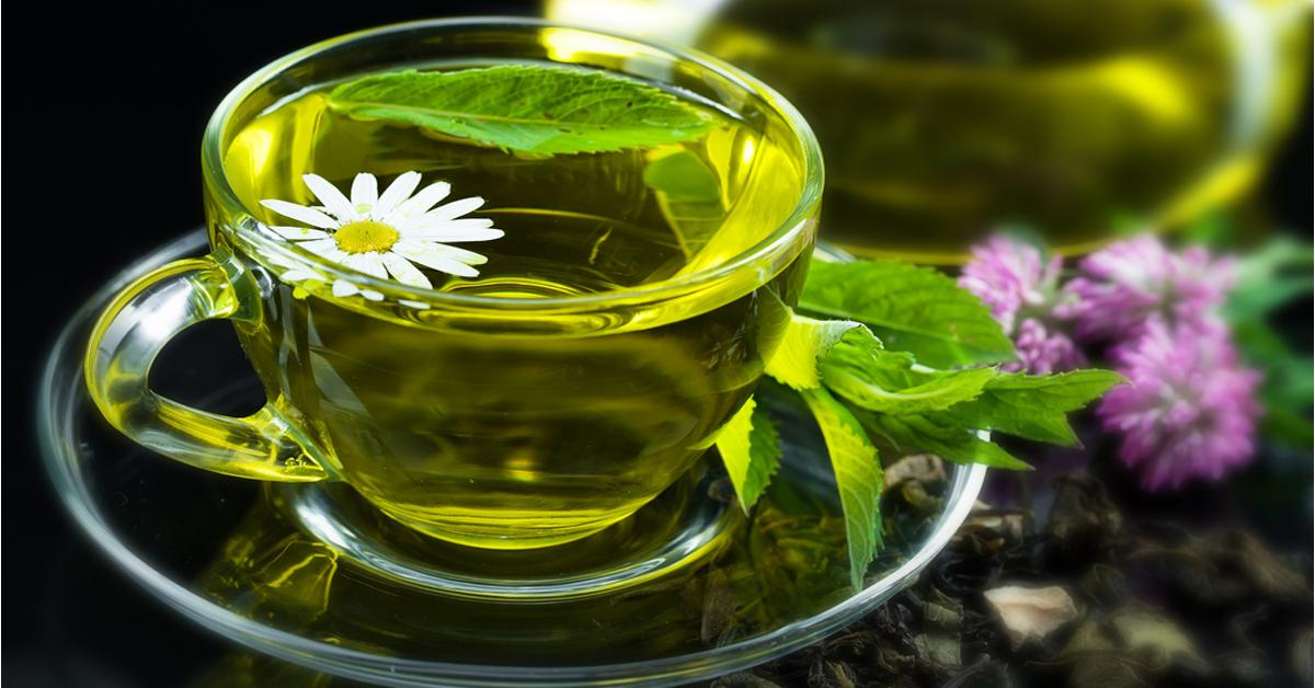 Зеленый чай и его поразительное свойство, а также способ применения раскрыли ученые