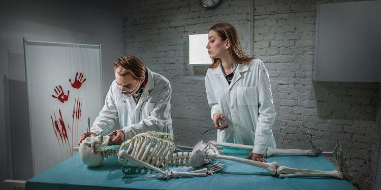 В Германии найдены «десятки мозгов», припрятанных в Институте психиатрии для экспериментов