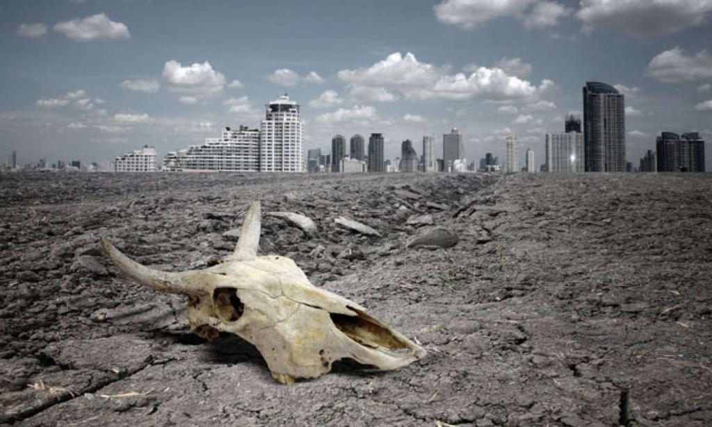 Земля находится на грани массового вымирания – причины и время, когда произойдет это страшное событие, озвучили ученые