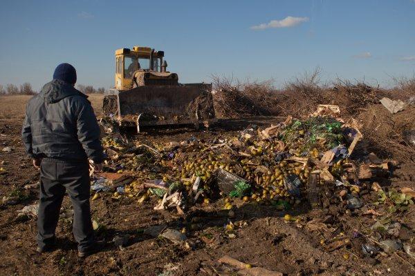 В Ростове уничтожили «подозрительные» груши