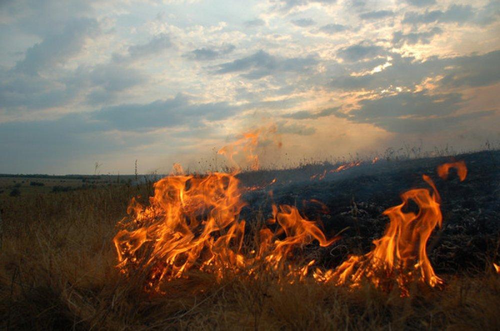 В Крыму ликвидировали степной пожар на площади около шести гектаров