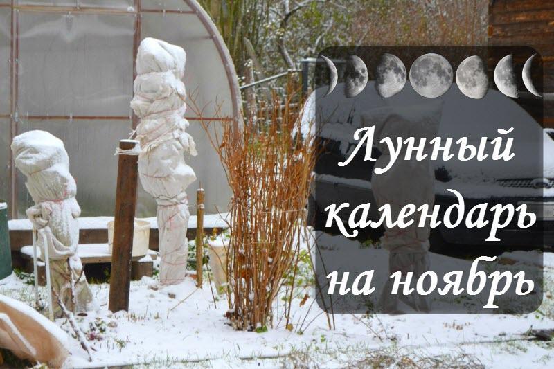 Лунный календарь на ноябрь 2017 года: советы и прогнозы астрологов на месяц для всех знаков Зодиака