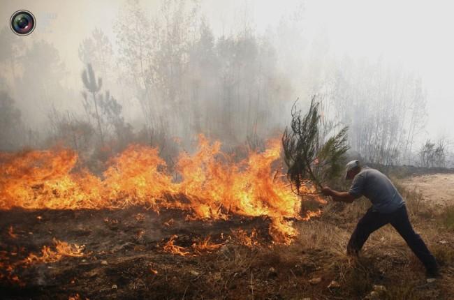 В Ростове объявлен чрезвычайный режим из-за высокого риска природных пожаров