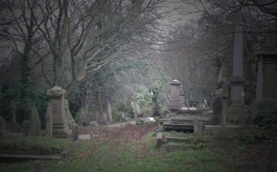 Семья 14 лет ходила скорбеть не на ту могилу