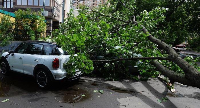 Циклон вЧечне поломал неменее 300 домов