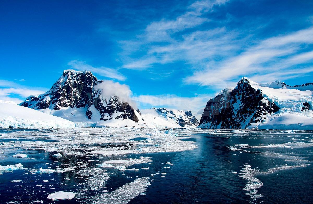 Из глубин Антарктиды доносятся жуткие звуки, которые пугают ученых
