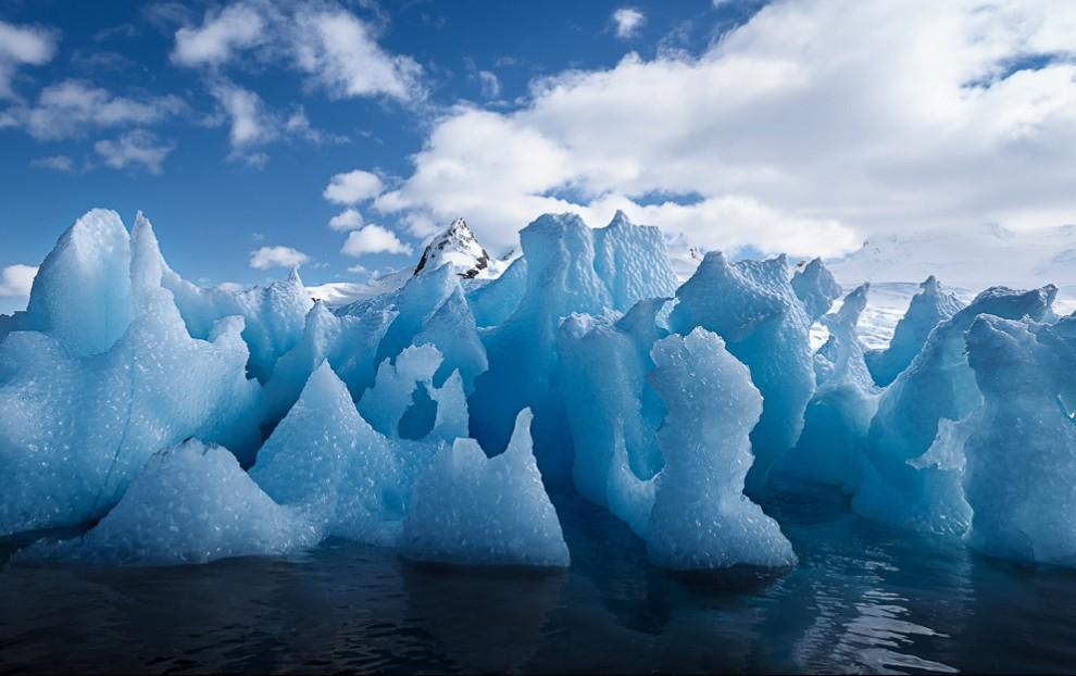 В Антарктиде нанесен рекордный удар по главному «покрытию», неутешительный вердикт ученых