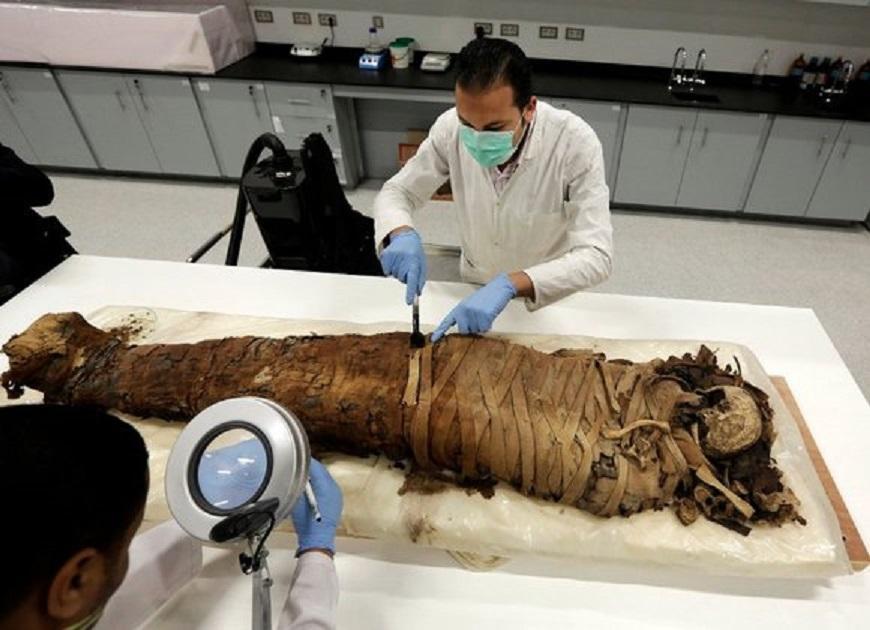 Расшифрован геном египетских мумий: происхождение египтян стало большим сюрпризом для ученых