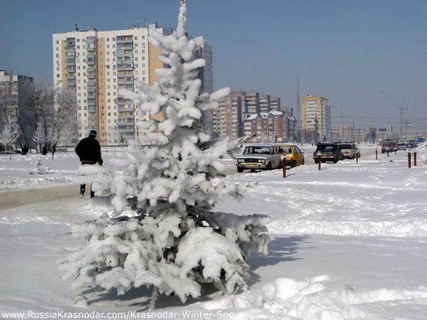 Когда зима придет на Кубань – рассказали синоптики