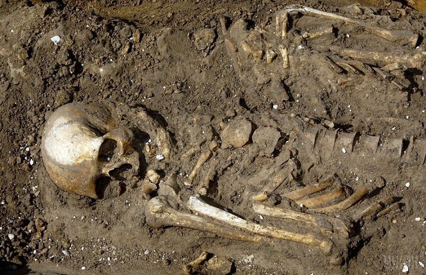 Находка из Кастеидолло опровергает теорию Дарвина