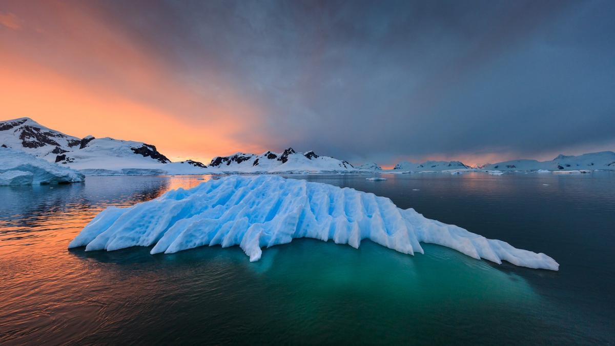 В Антарктиде живут целые цивилизации: странные звуки подземной жизни поразили ученых