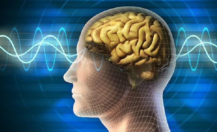 Человеческий мозг продолжает жить после смерти: ученые зафиксировали уникальный случай