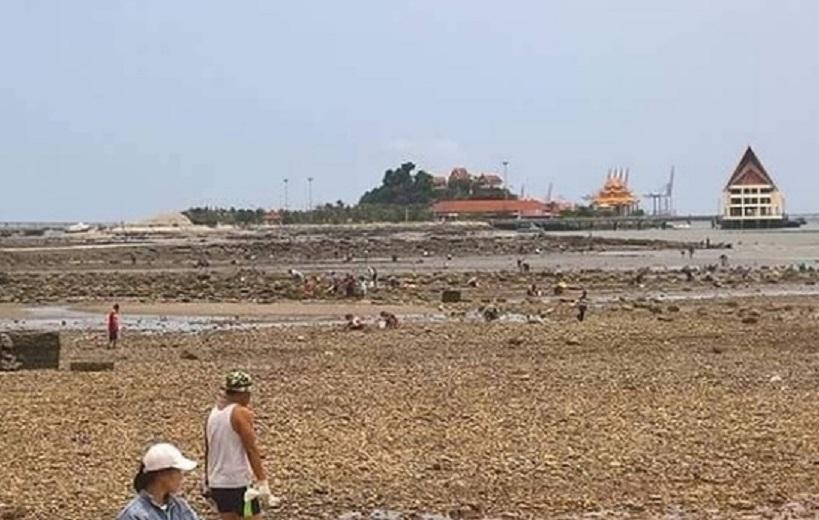 Такого еще не было: загадочная аномалия на побережье Таиланда удивила местных жителей