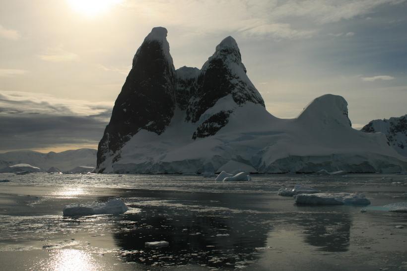В Антарктиде сделана неожиданная находка