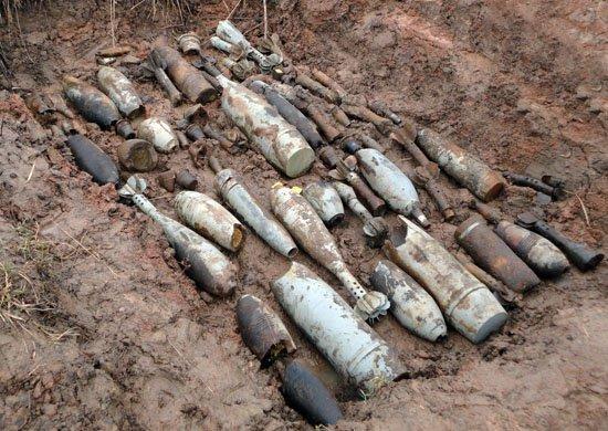 В Тверской области обезвредили около 800 взрывоопасных боеприпасов