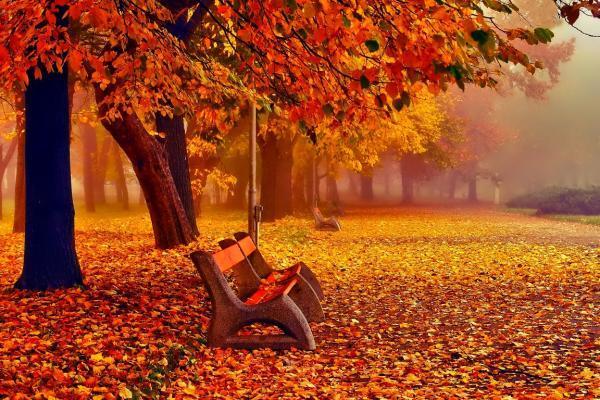 Длинные выходные в ноябре 2018: как работаем и отдыхаем на ноябрьские праздники и когда выходить на работу