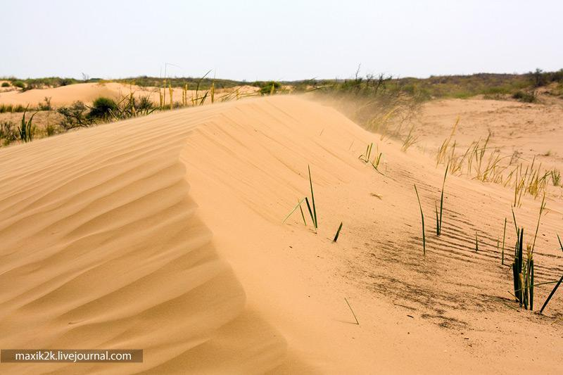 Пески поглощают Астраханскую область – СМИ