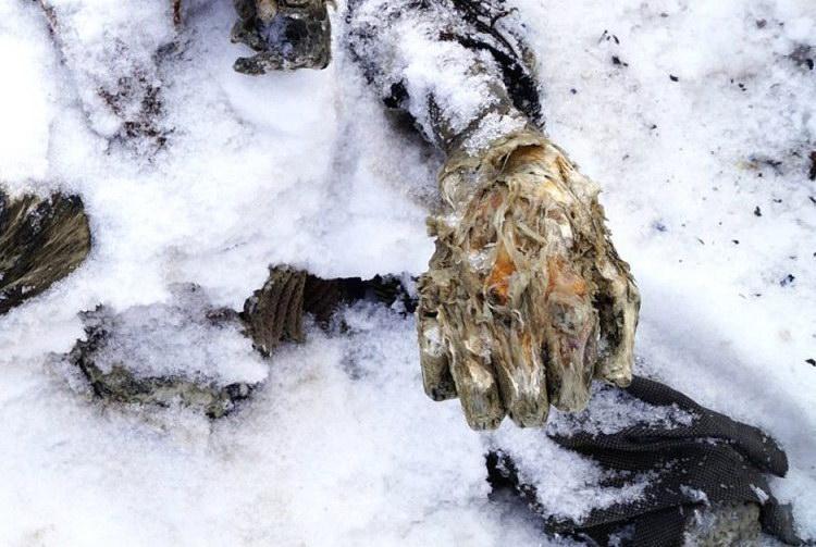 Древняя мумия мужчины, найденная во льдах