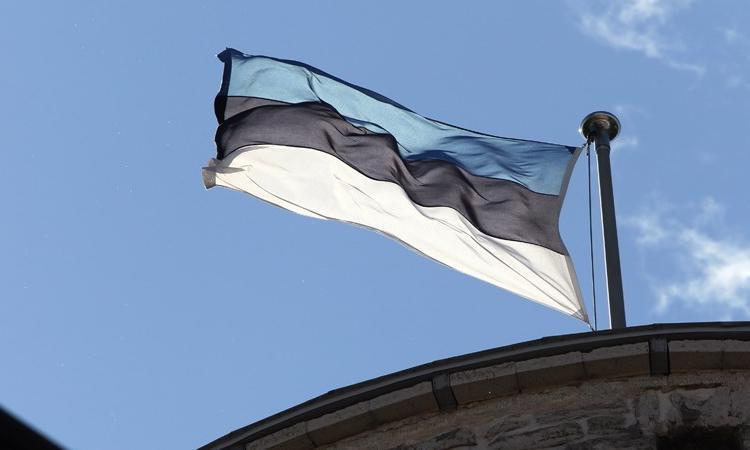 Эстония радуется предложению России по безопасности полетов