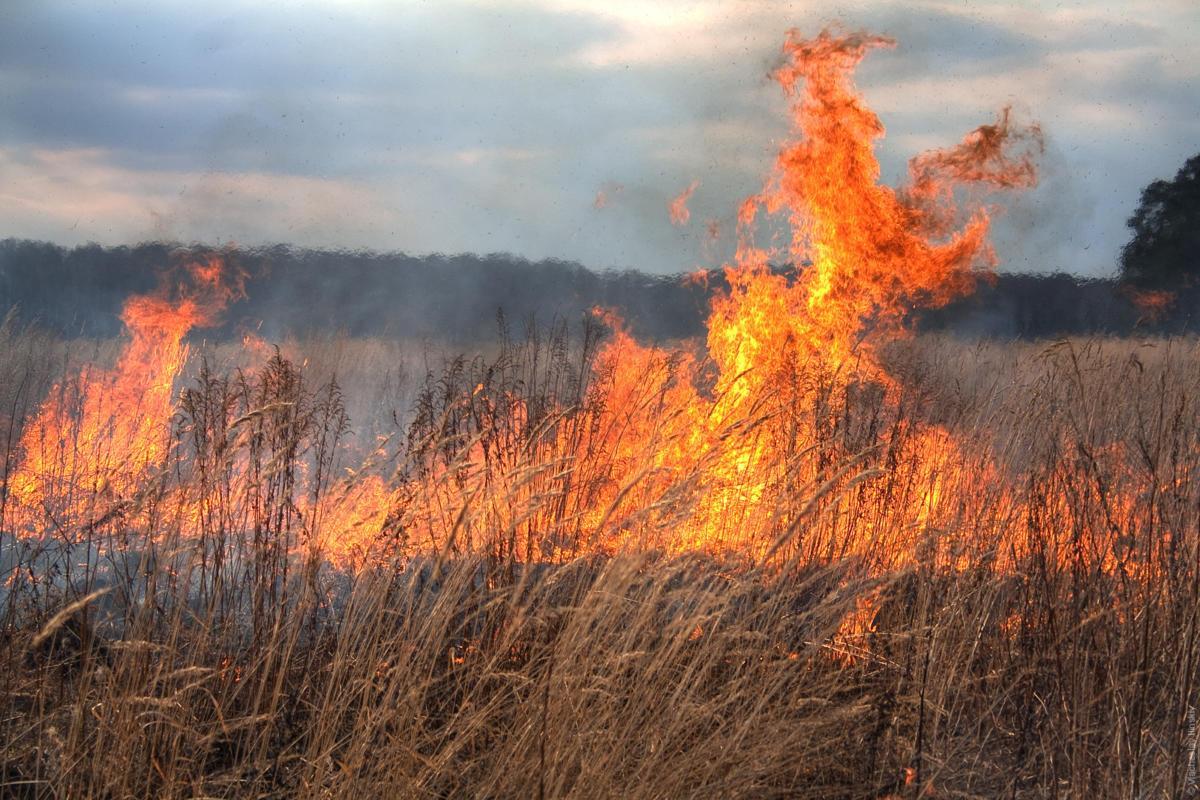 В МЧС Астрахани раскрыли причину появления запаха гари по ночам