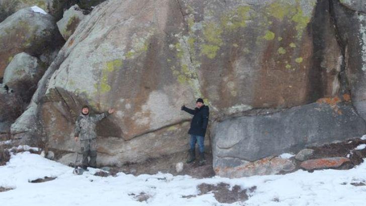 На Алтае обнаружены уникальные трехметровые петроглифы