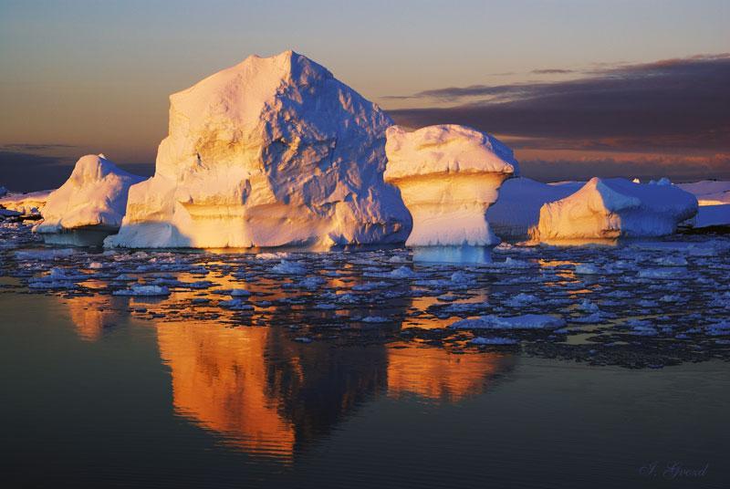 Страшнее любых инопланетян: в Антарктиде зафиксировано явление, несущее большую угрозу человечеству