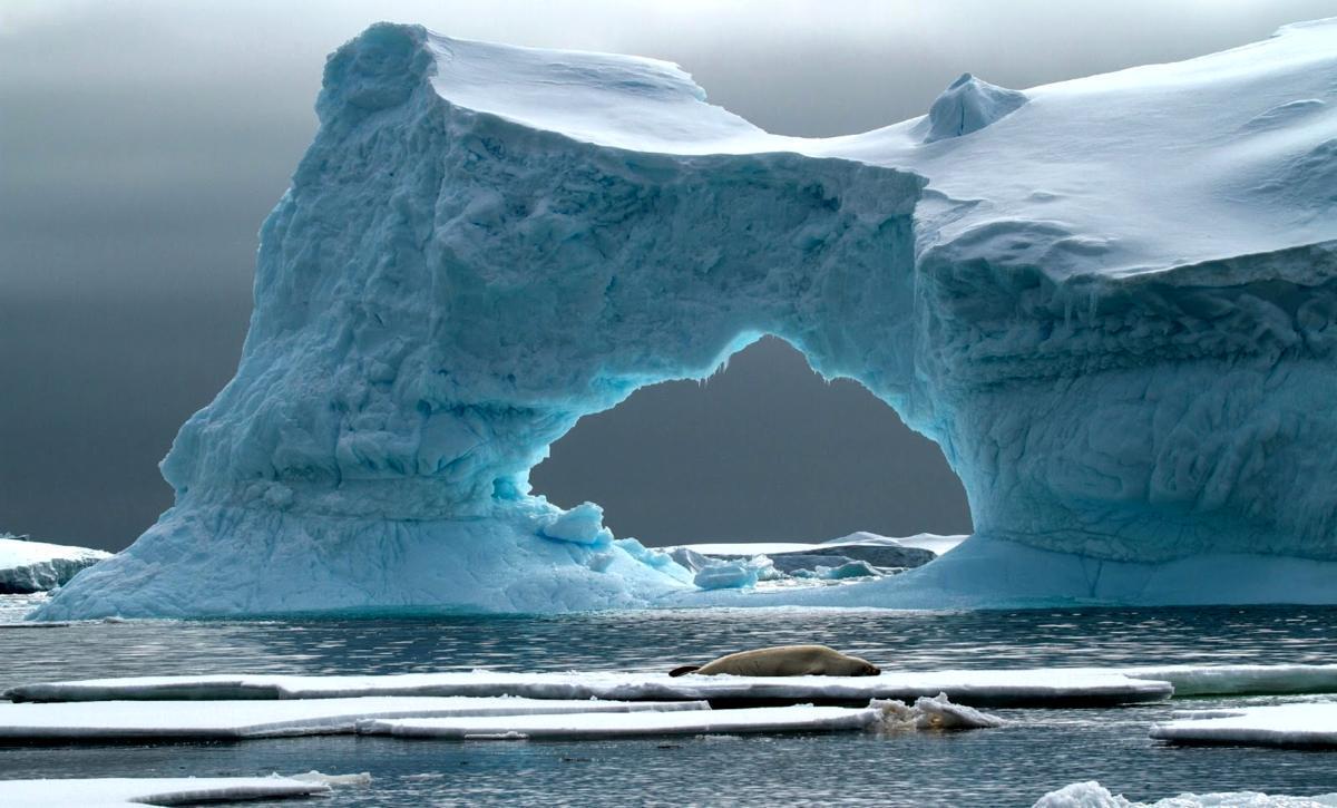 В Антарктиде выявлена аномалия, грозящая «заражением» многих территорий