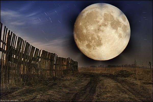 Лунный посевной календарь на апрель 2017 для садоводов и огородников