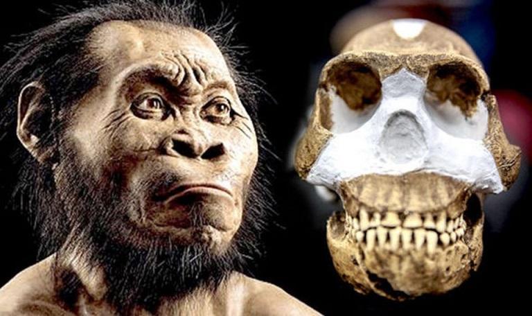 «Люди-звезды»:в африканской пещере нашли неизвестный вид предков человека