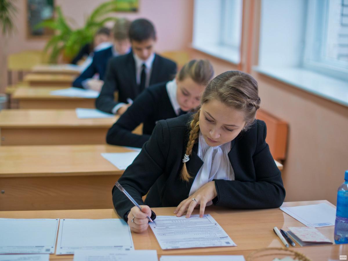 Альтернатива ЕГЭ: предложена новая система оценки знаний школьников