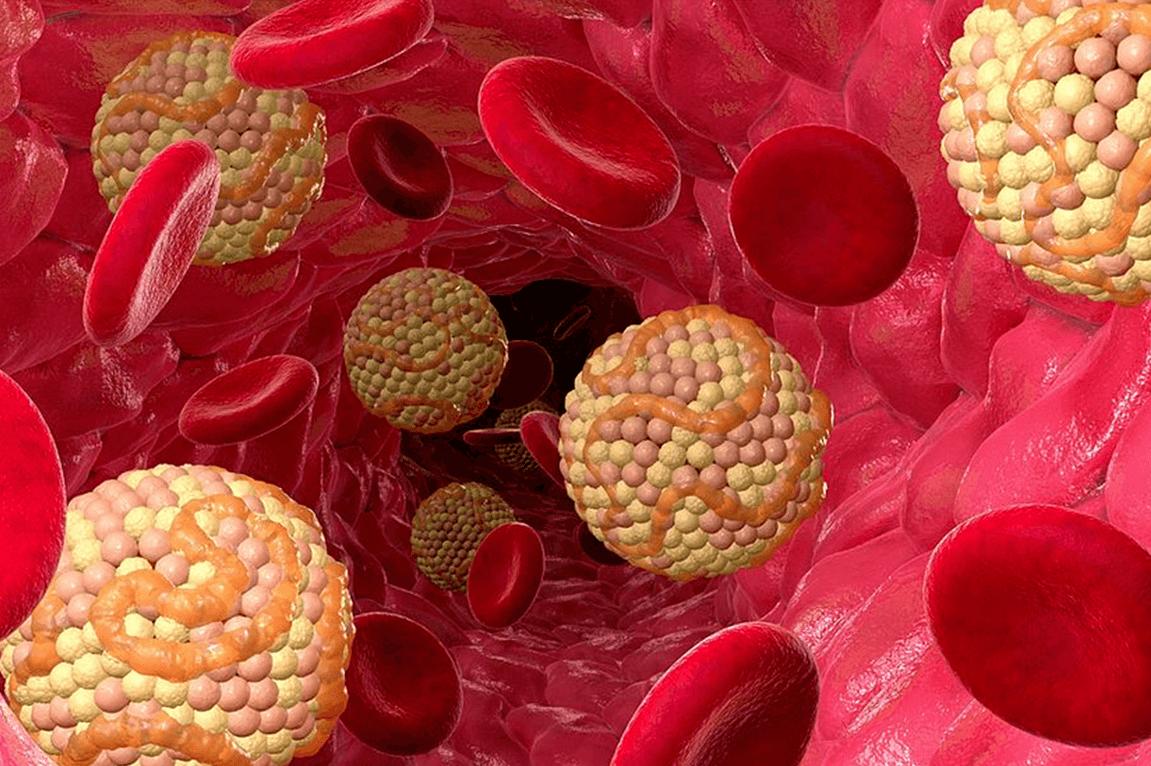 Продукт, снижающий уровень холестерина в крови, назвали ученые