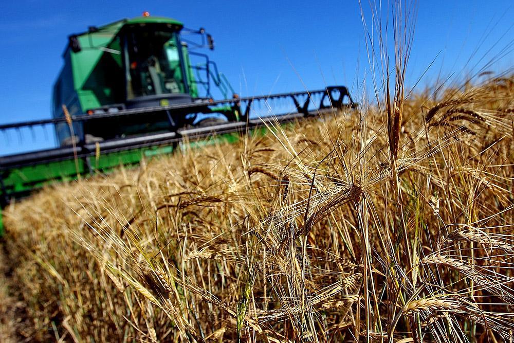В Швеции высоко ценили успехи и достижения России в сельском хозяйстве
