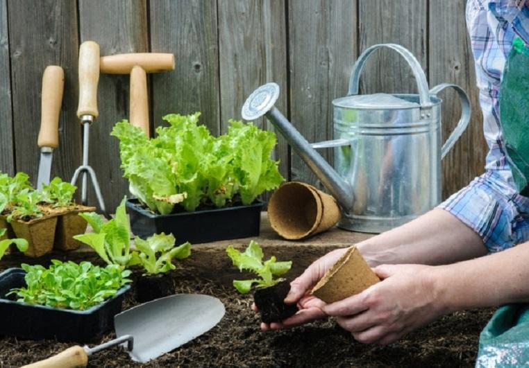 Посевной календарь для садоводов и огородников на апрель 2018 года: таблица благоприятных дней для посадки и ухода за растениями