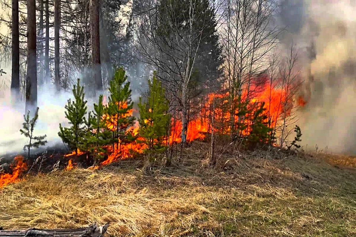 Жителей Астраханской области предупредили о чрезвычайной пожароопасности