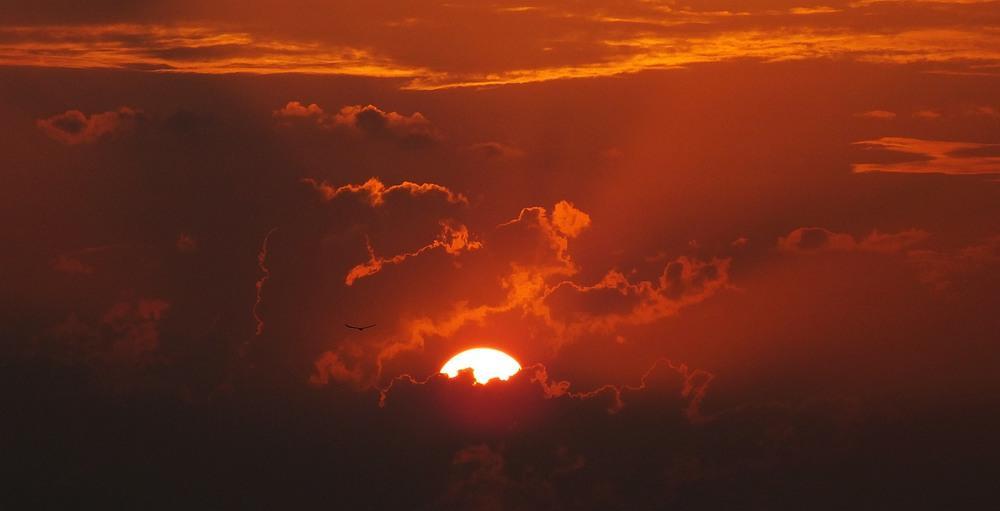 Предано огласке пророчество святой Матроны об апокалипсисе, озвучена точная дата
