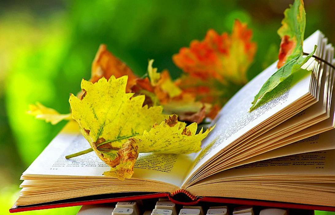 Стихи-поздравления с Днем учителя-2018: короткие, красивые и душевные четверостишия для учителей и педагогов