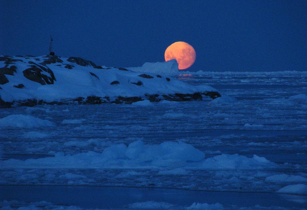 В Антарктиде обнаружено жуткое явление, происходящее по ночам: уфологи вынесли вердикт