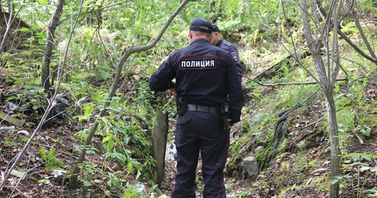 В Дагестане обнаружен крупный схрон с оружием