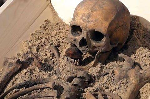 Останки вампира XVI века впервые выставят в музее