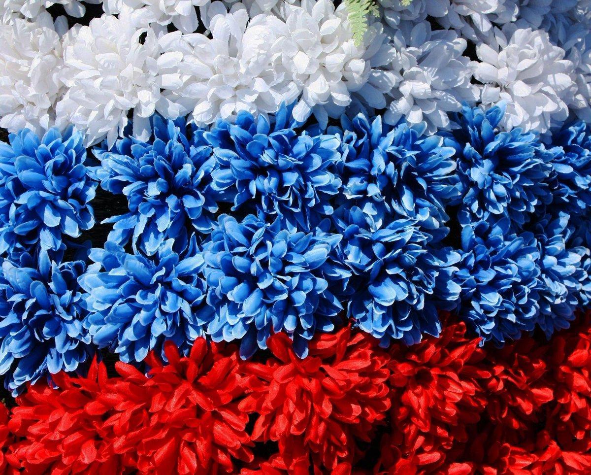 День России 12 июня 2018: история праздника, торжественный салют и фейерверк