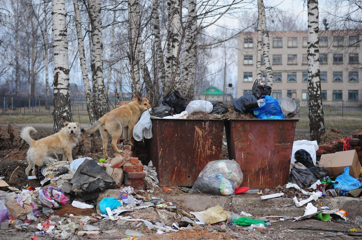ВРостовской области выявили 60 больших нарушений благоустройства