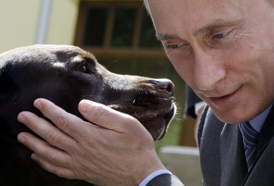 85% республиканцев США считаю Путина хорошим лидеров