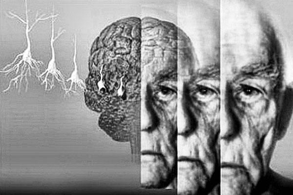 Ученые научились предсказывать приближение смерти