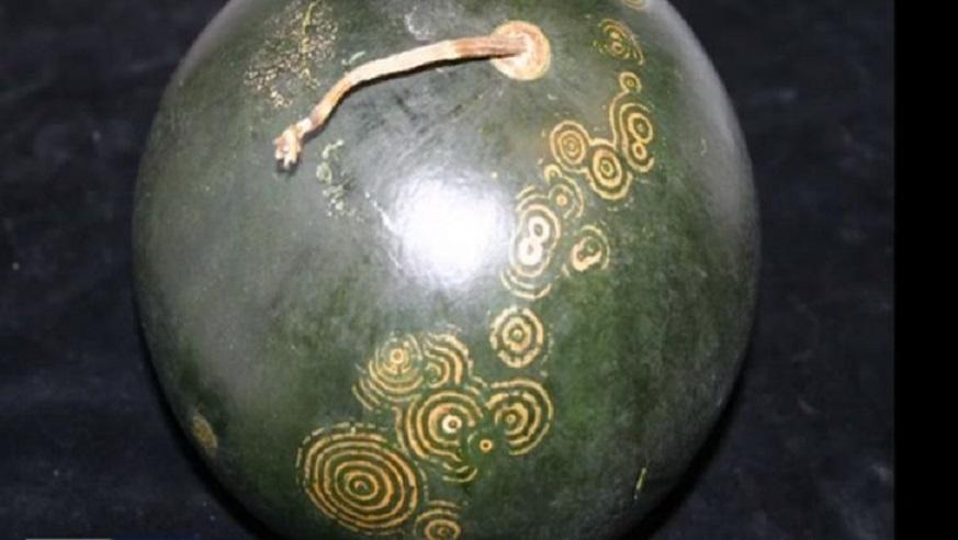 Инопланетные послания: странные узоры на кожуре арбузов напугали жителей Алтайского края