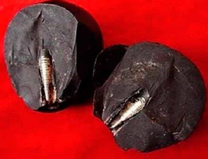 Ланьчжоуский камень: артефакт возрастом 300 миллионов лет ломает привычную теорию происхождения жизни на Земле