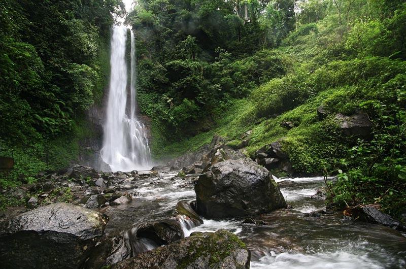 Загадочное огромное существо перешагнуло реку: удивительные кадры сделали туристы в Индонезии