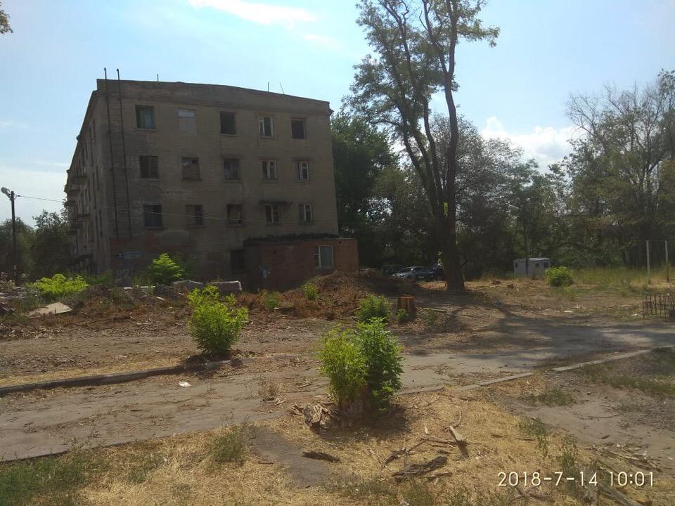 Настоящая пустыня: жители Ростова возмущены вырубкой сквера в городе