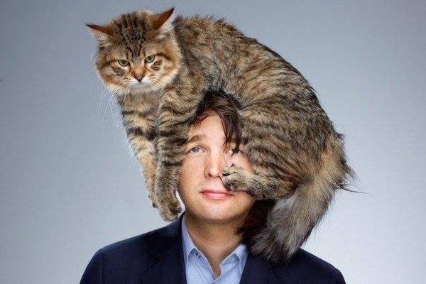 Опасность при общении с кошкой