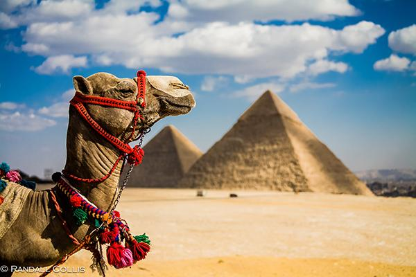 Теракт в Египте