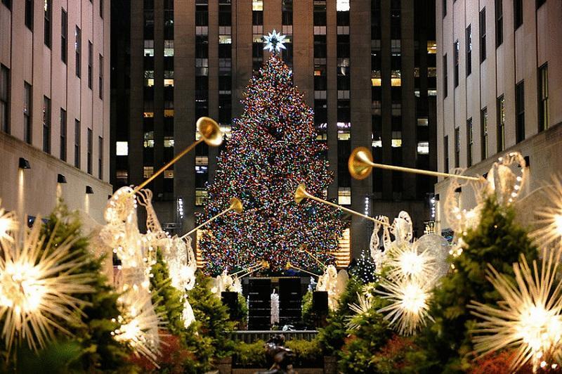 Ддональду Трампу доставили главную рождественскую ель
